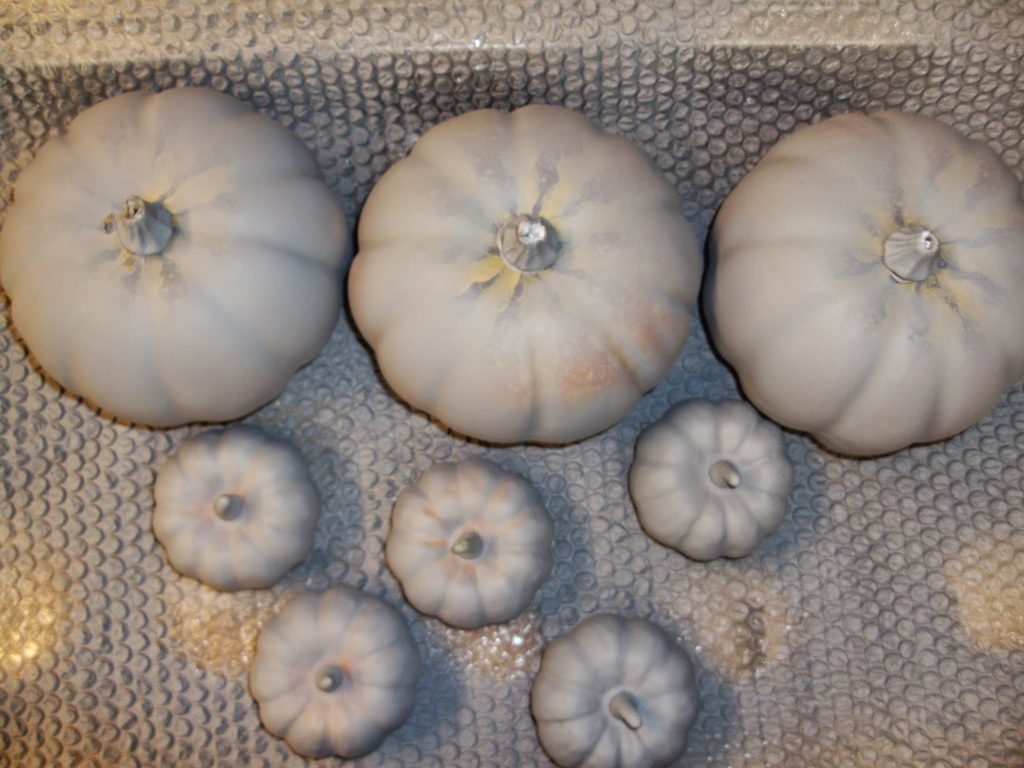 Plastic pumpkins with primer