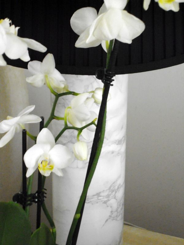 How to makeover an old lamp, white orchid