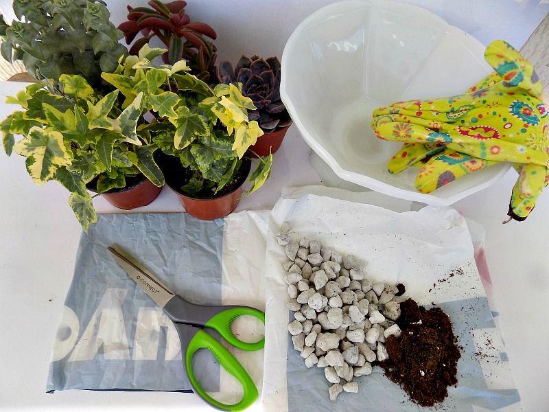 Υλικά που χρειάστηκα για να φτιαχτεί ο μίνι κήπος