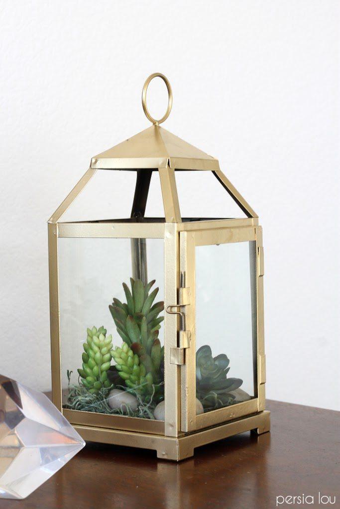Lantern terarium
