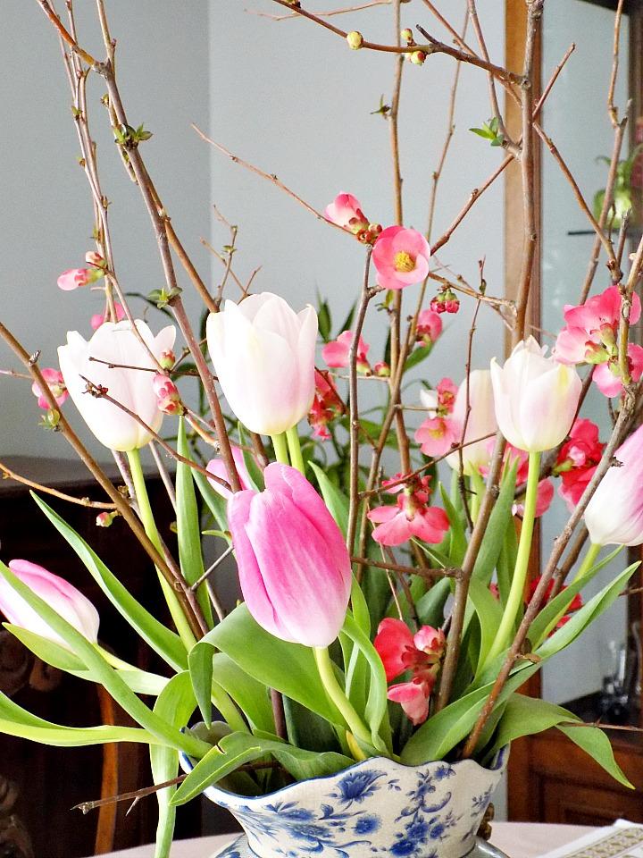 Κλαδιά τσιντόνιας και τουλίπες σε ροζ χρώμα