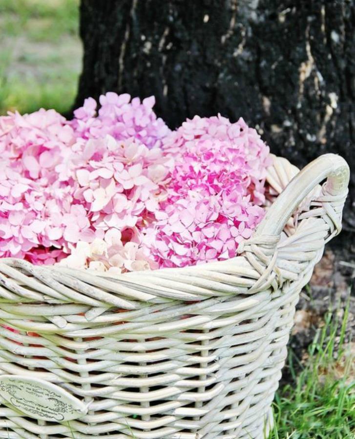 Τι διάβασα και μου άρεσε, how to decorate with hydrangeas