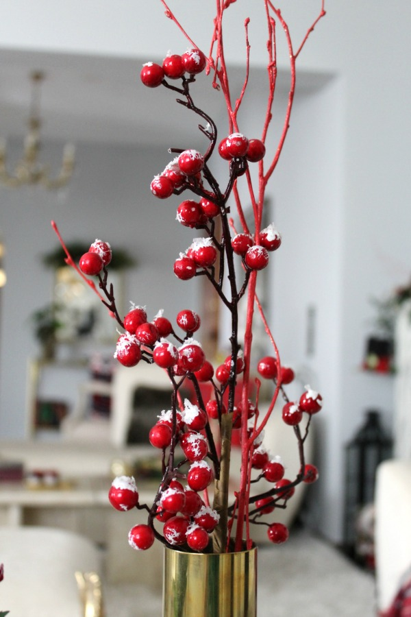Christmas 2019, red berries branches