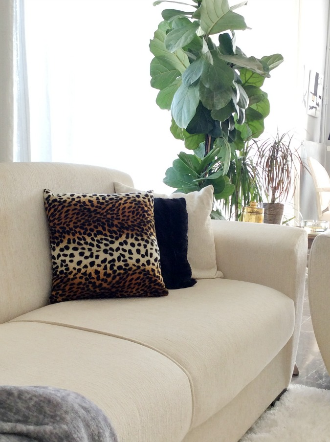 Indoor plants, velvet animal prin pillow