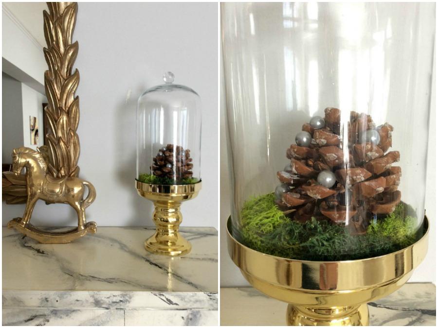 Εννέα tips για την μετάβαση από την γιορτινή διακόσμηση στη χειμωνιάτικη | Pinecone and green moss in a glass dome
