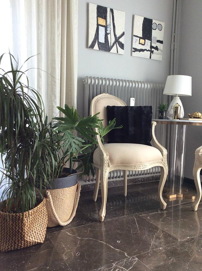 Δέκα τρόποι χρήσης των καλαθιών, φυτά εσωτερικού χώρου στο σαλόνι