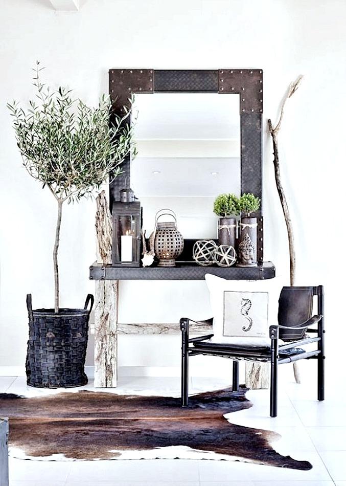 Διακόσμηση εσωτερικού χώρου με δέντρο ελιάς