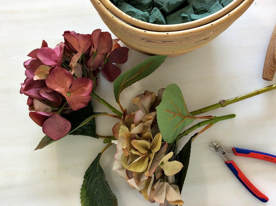 Ορτανσίες σε φθινοπωρινά χρώματα
